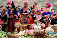 Highlights Of Vietnam 10 Days 9 Nights North To South Package Tour